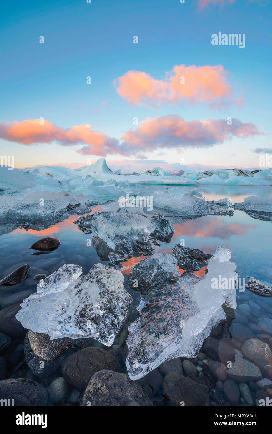 Jokulsarlon, Eastern Iceland, Iceland, Northern Europe. The iconic little icebergs lined in the glacier lagoon during a sunrise - Stock Image
