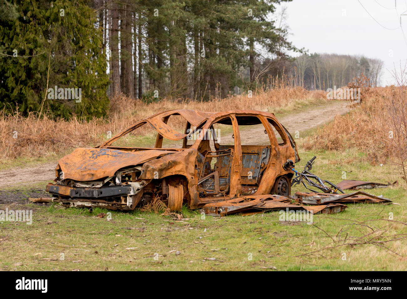 Rusty brown burned out car abandoned at the edge of a forest dirt track, only the metal parts remain - Stock Image