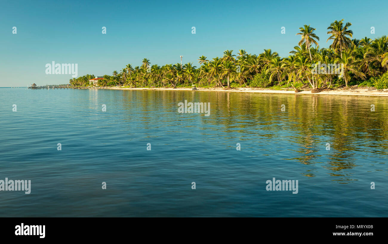 Tropical Caribbean beach destination of Ambergris Caye in Belize - Stock Image