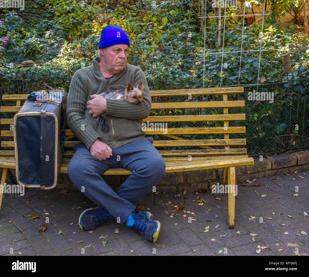 Homeless caucasian man with his small dog and his belongings sit on a yellow bench in a park image with copy space in landscape format - Stock Image