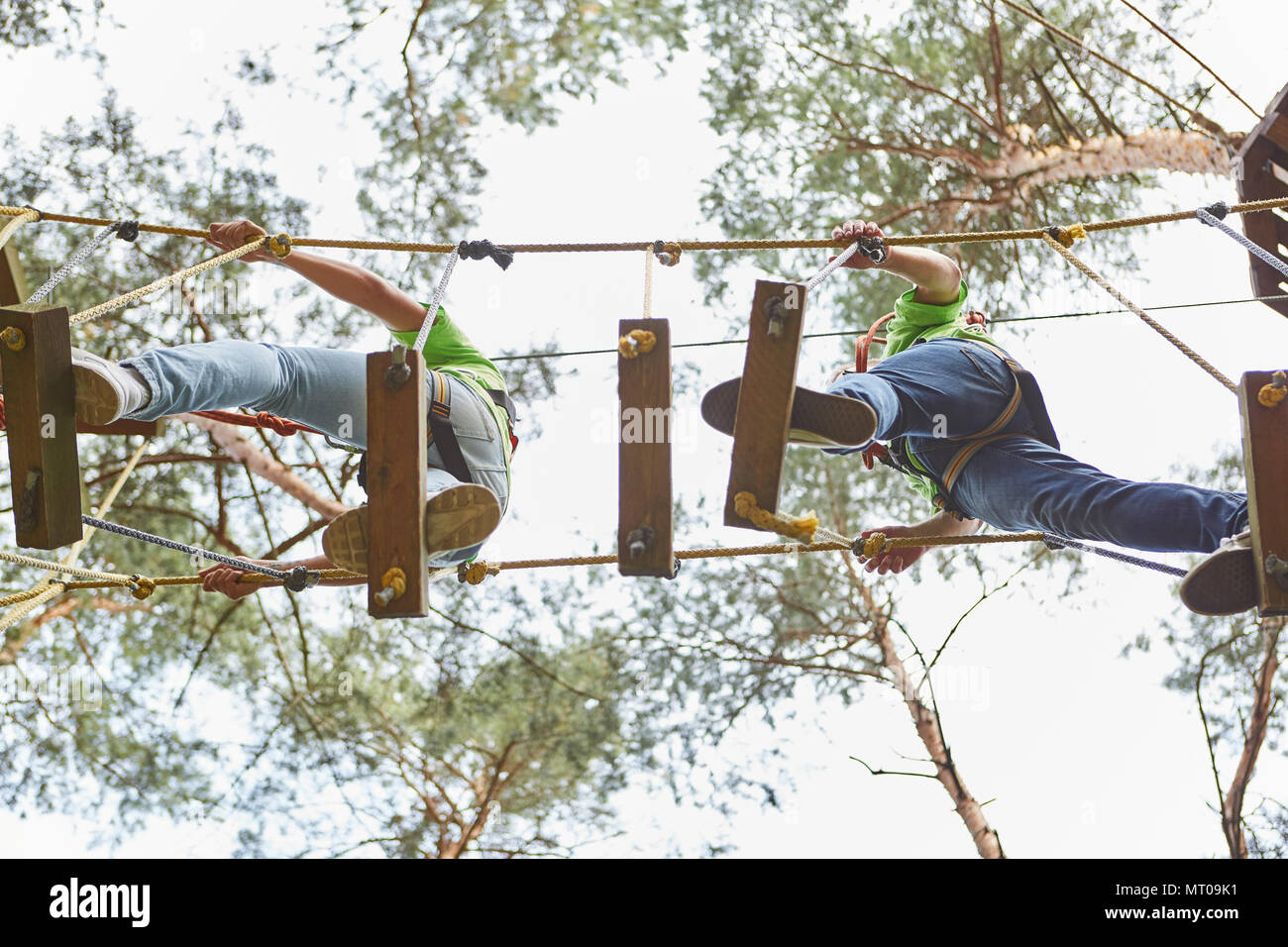 Team balances on a bridge with high difficulty in the high ropes course - Stock Image