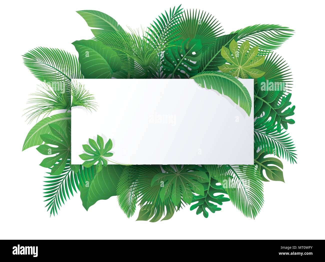 Sign With Text Space Of Tropical Leaves Suitable For Nature Concept Vacation And Summer Holiday Vector Illustration Stock Vector Image Art Alamy Take a vacation without leaving your home! https www alamy com sign with text space of tropical leaves suitable for nature concept vacation and summer holiday vector illustration image186875471 html