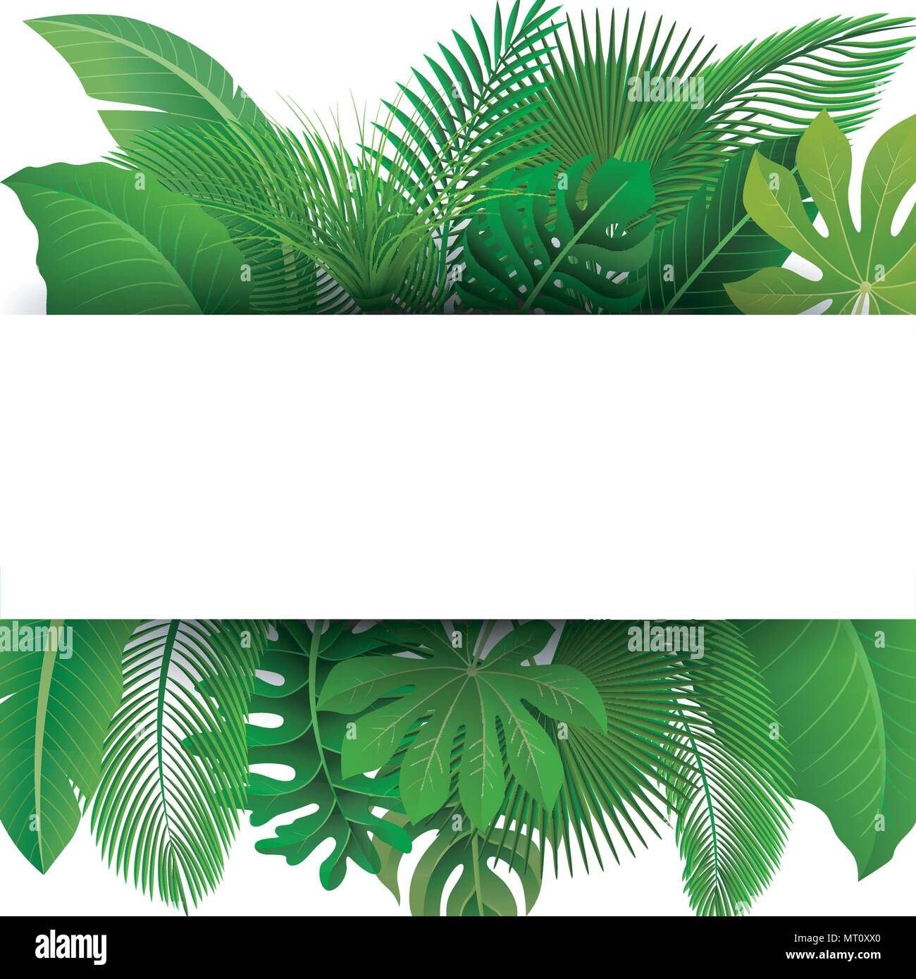 Sign With Text Space Of Tropical Leaves Suitable For Nature Concept Vacation And Summer Holiday Vector Illustration Stock Vector Image Art Alamy Tropical leaves fashion sign, card or logo template. alamy