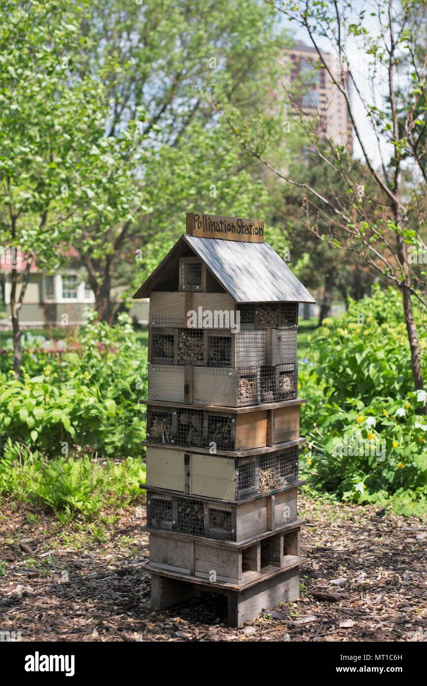 A pollination station, in Loring Park in Minneapolis, Minnesota, USA. - Stock Image