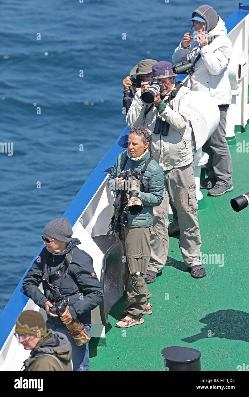 ecotourists watching wildlife from ship  At sea, Bay of Biscay                  May - Stock Image