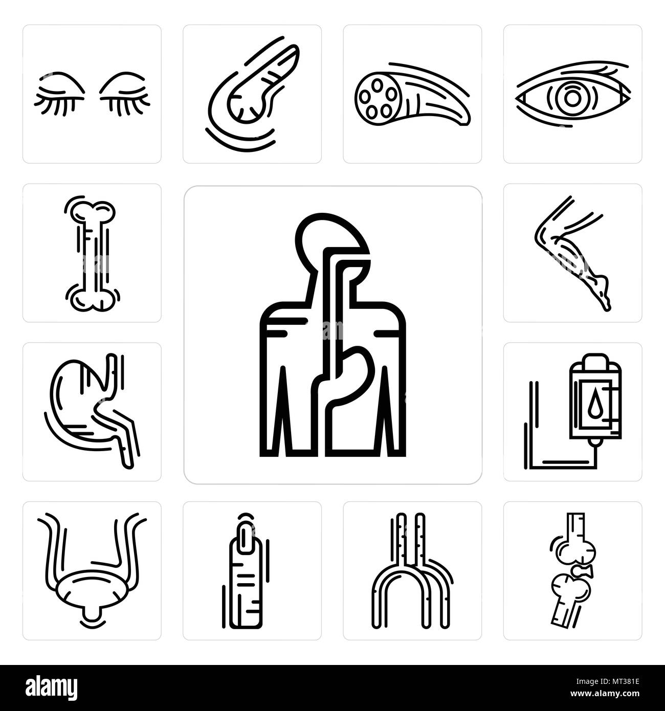 Set Of 13 simple editable icons such as Digestive System, Bones Joint, Human Artery, Finger, Bladder, Blood Transfusion, Stomach with Liquids, Men Leg - Stock Image