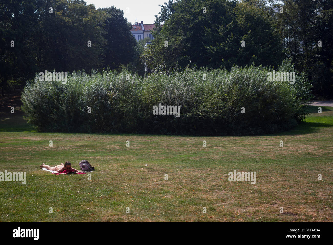 A reading woman sunbathes in Rathaus Schoneberg Park, Berlin, Germany. - Stock Image