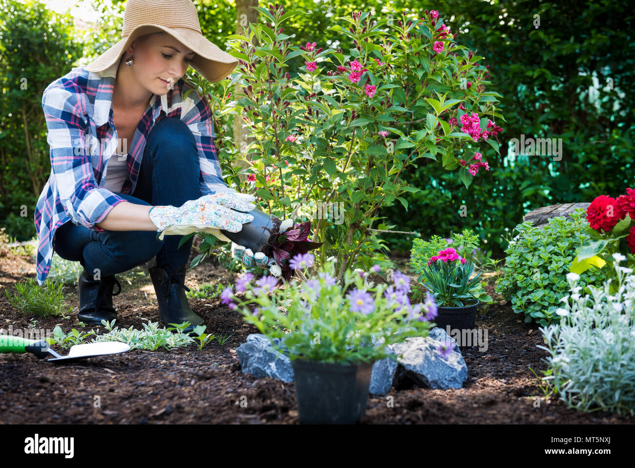Beautiful female gardener wearing straw hat planting flowers in her garden. Gardening concept. Garden landscaping small business owner. - Stock Image