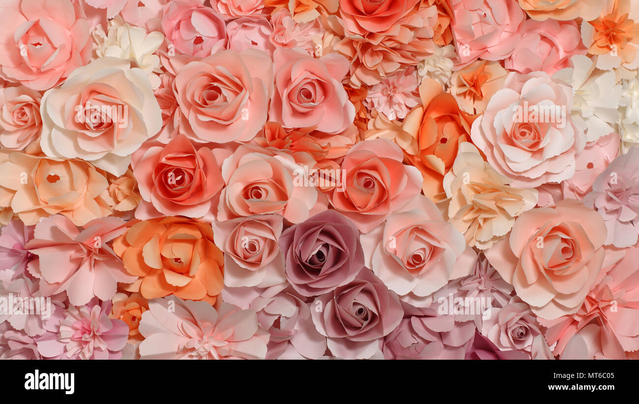 Colorful Flowers Paper Background Pattern Lovely Style Panorama 16