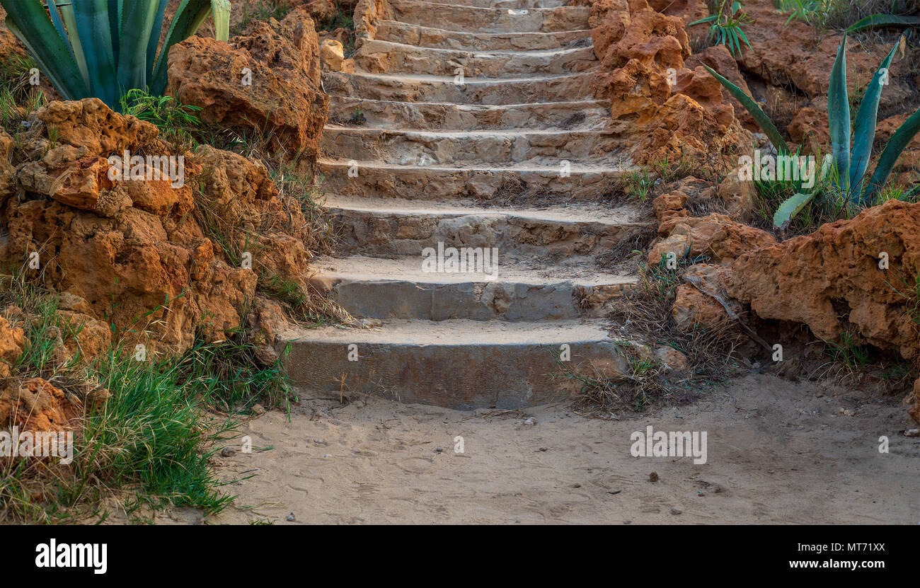 Natural stone stairway with green bushes on both sides at Montaza Public Park in summer time, Alexandria, Egypt - Stock Image