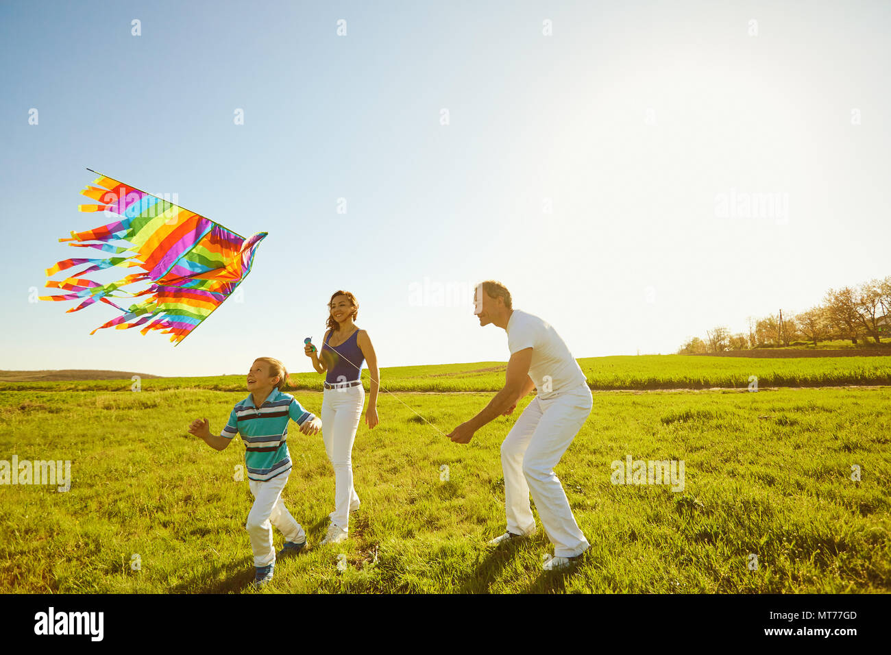 Happy family with a kite playing in the field in nature Stock Photo