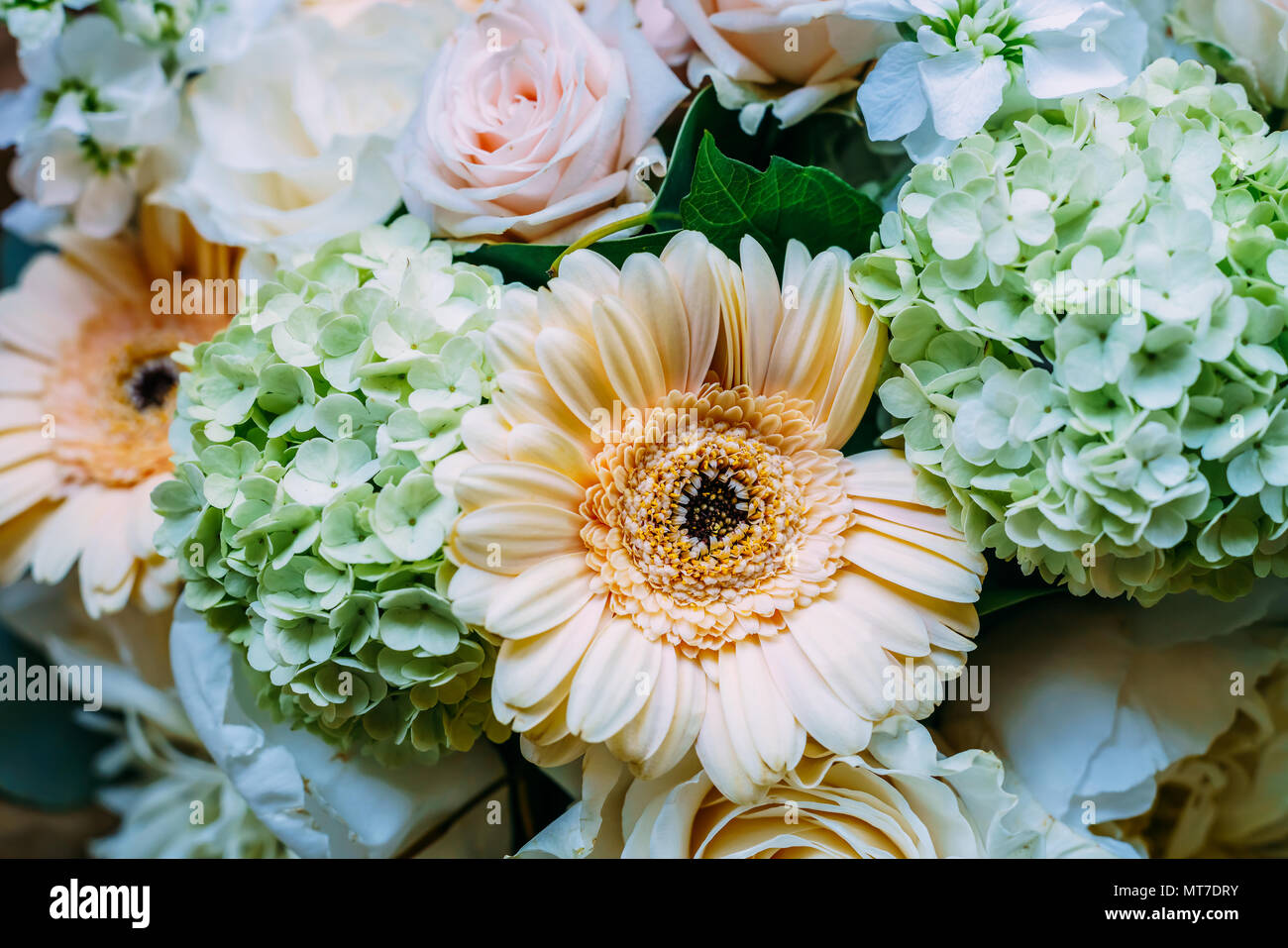 Pink Roses and Gerbera Daisy Flowers Wedding Bouquet Stock Photo ...