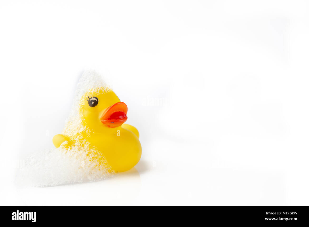 One Yellow rubber duck with soap suds on its head on white background - Stock Image