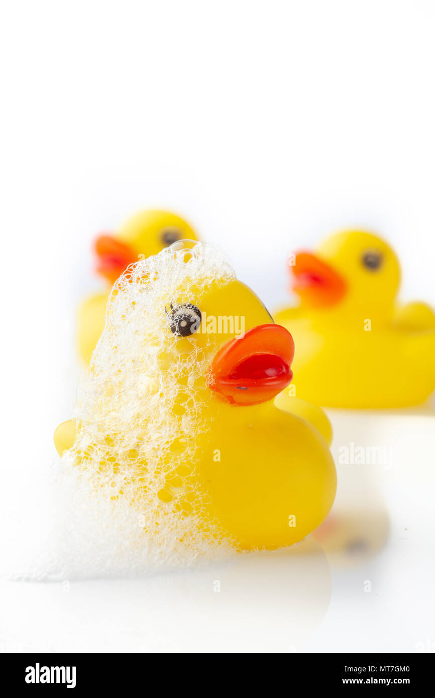 3 Yellow rubber ducks with soap suds on its head on white background - Stock Image