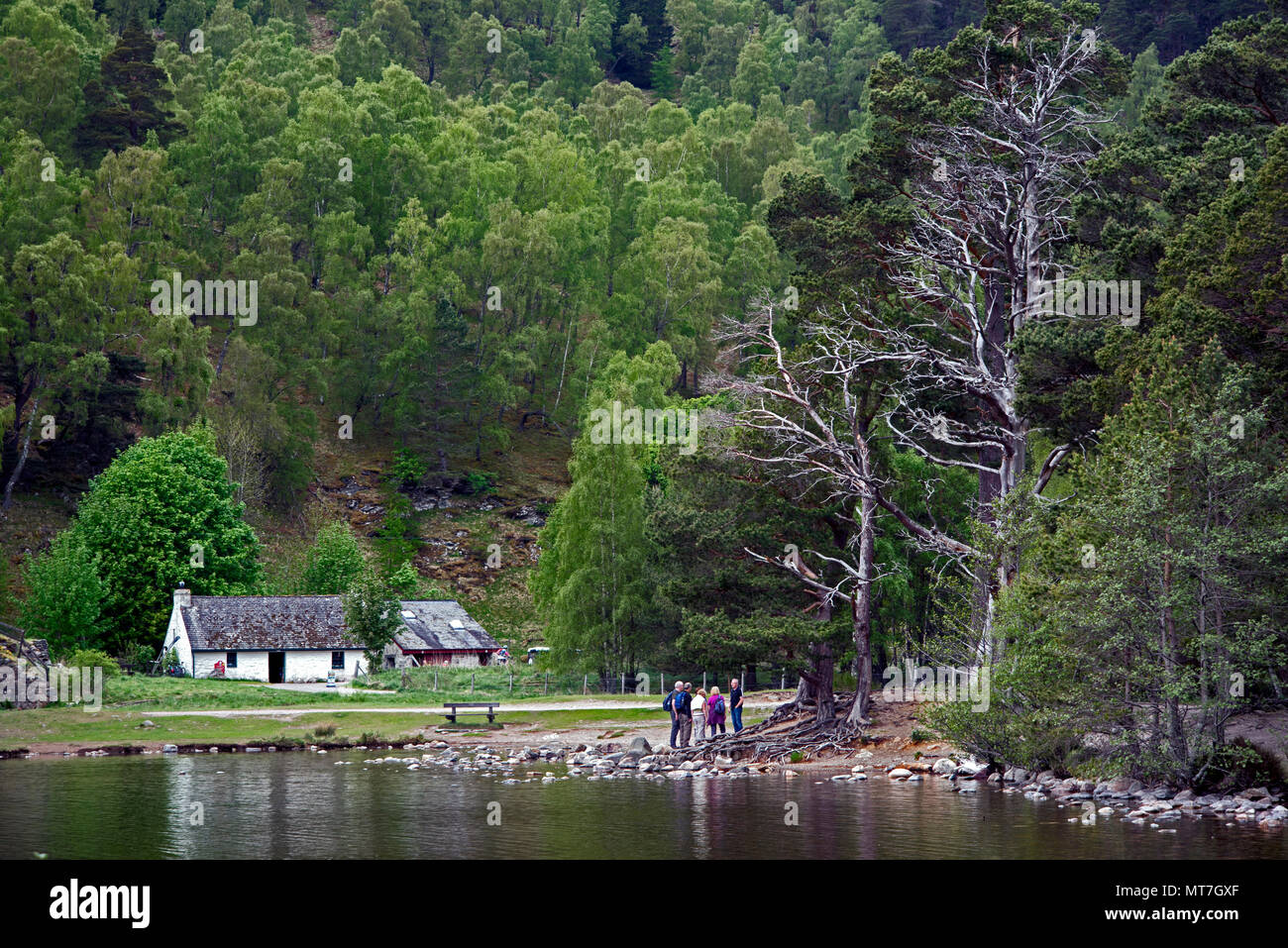 Visitor centre by the side of Loch an Eilein near Aviemore in the Cairngorms National Park, Scotland, UK. - Stock Image