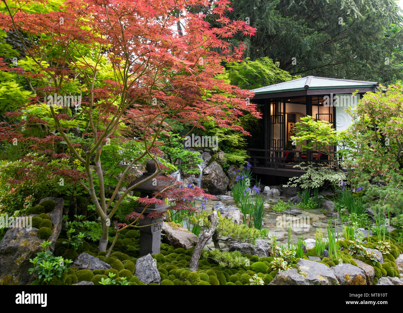 O-mo-te-na-shi no NIWA - The Hospitality Garden, a traditional Japanese design featuring a garden house surrouned by Acer trees designed by Ishihara K - Stock Image