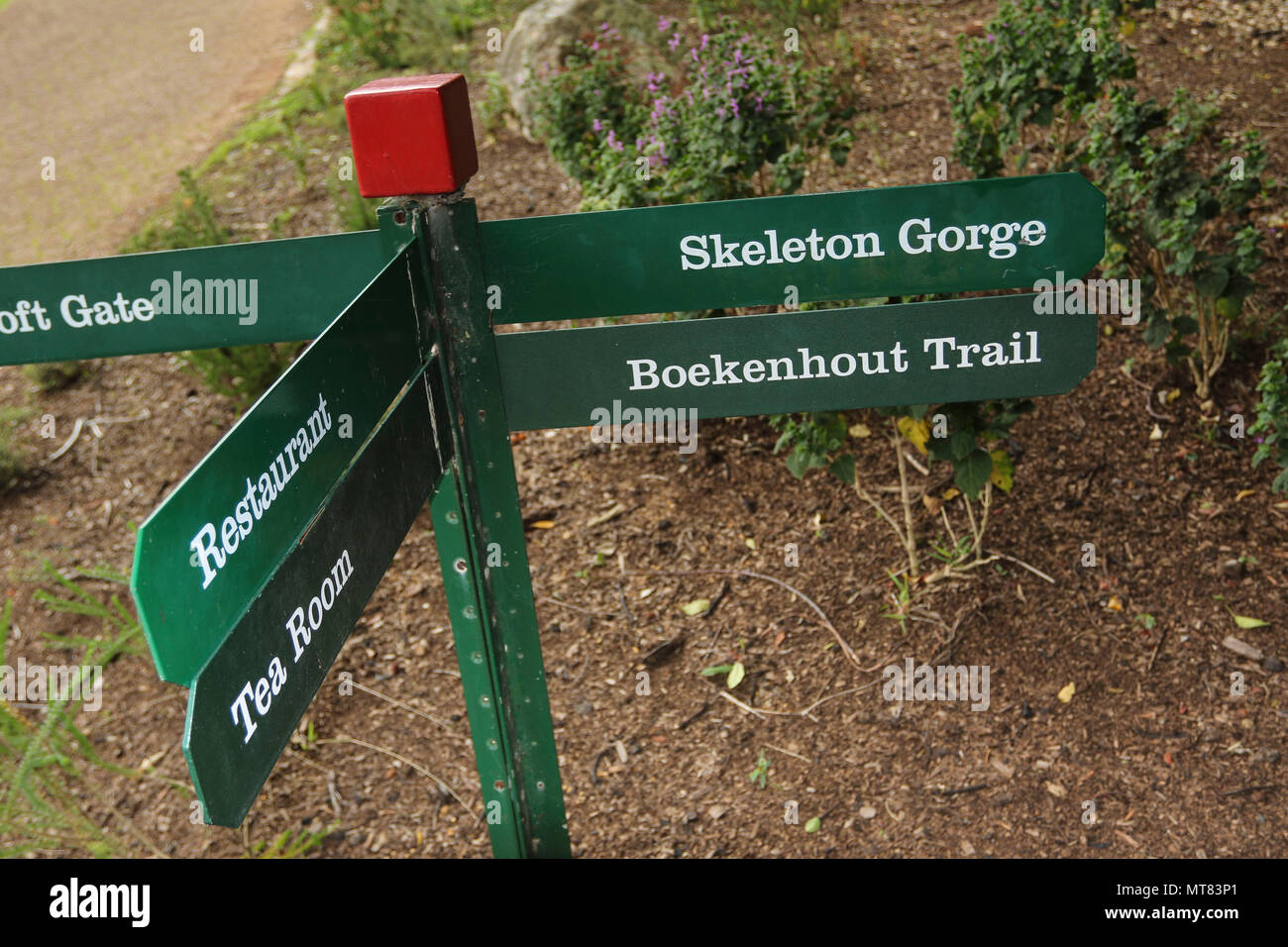 Trail signpost in Kirkenbosch botanic gardens, Capetown, South Africa - Stock Image