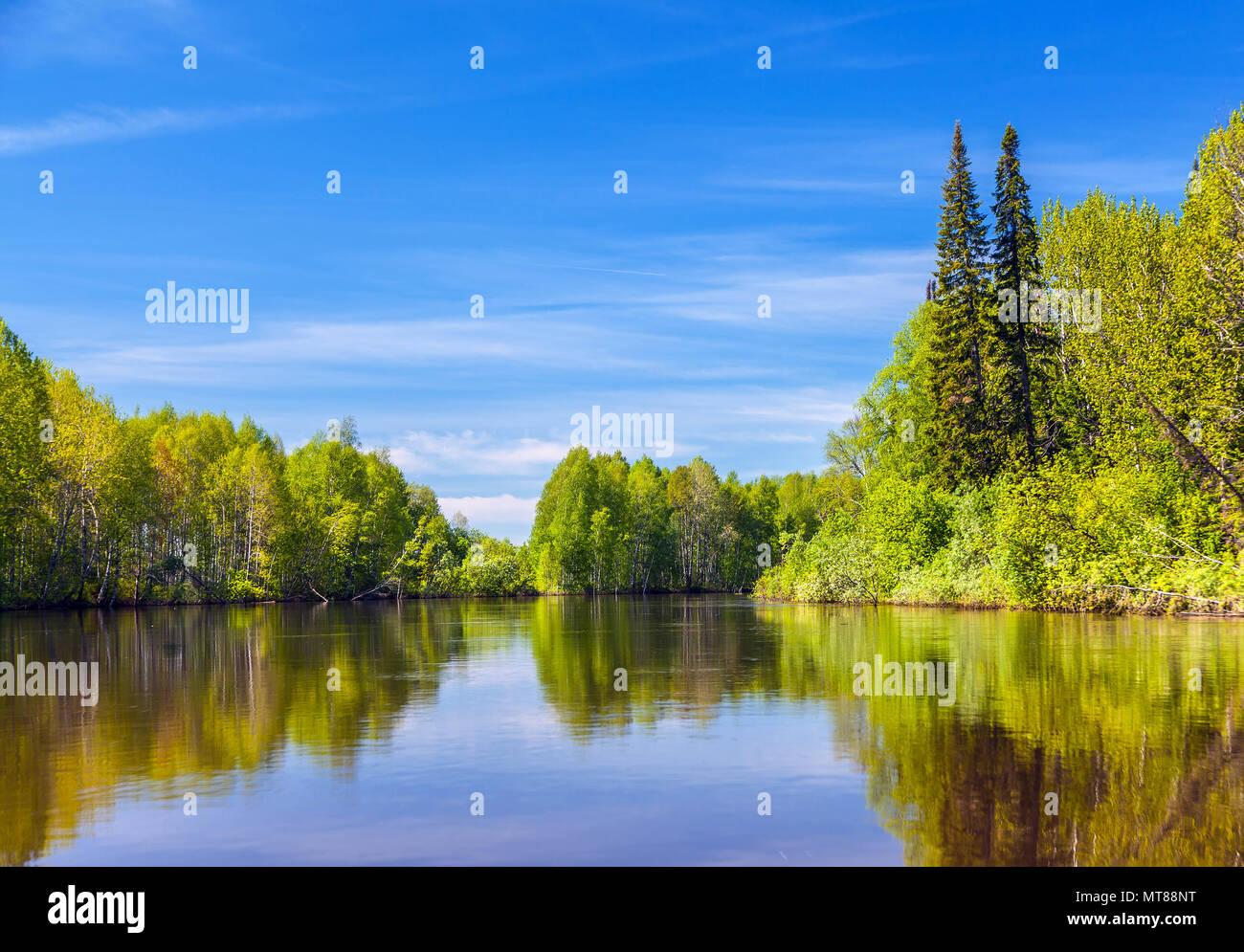 Summer in Siberia. - Stock Image