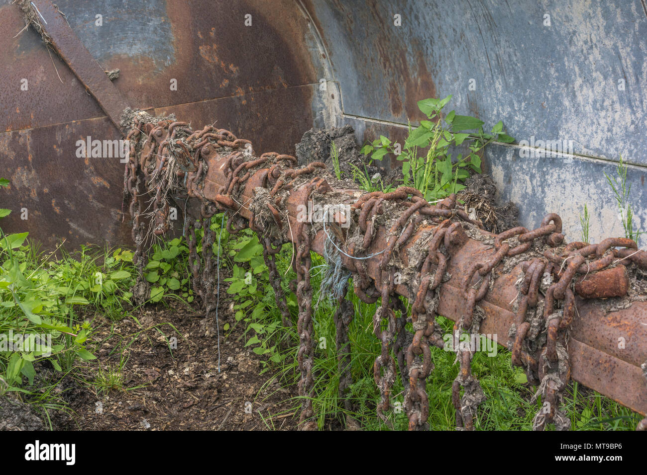 View inside the drum of a rotary flail chain muck spreader with weeds growing in old muck - typical farm machinery, and rustyy chains. - Stock Image