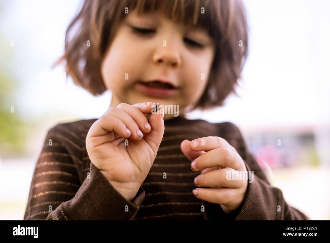 A toddler girl holding a bug in her hands. - Stock Image