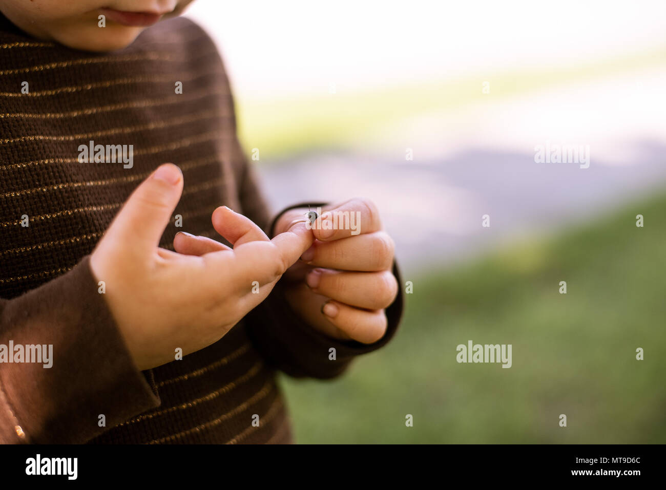 A toddler girl holding a bug in her hands. Stock Photo