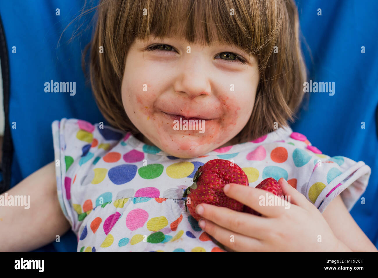 A 3-year old toddler eats a strawberry. - Stock Image