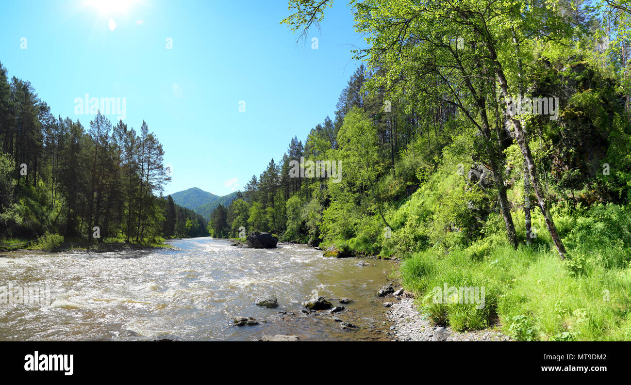 Mountain river Sema landscape in Altai Stock Photo