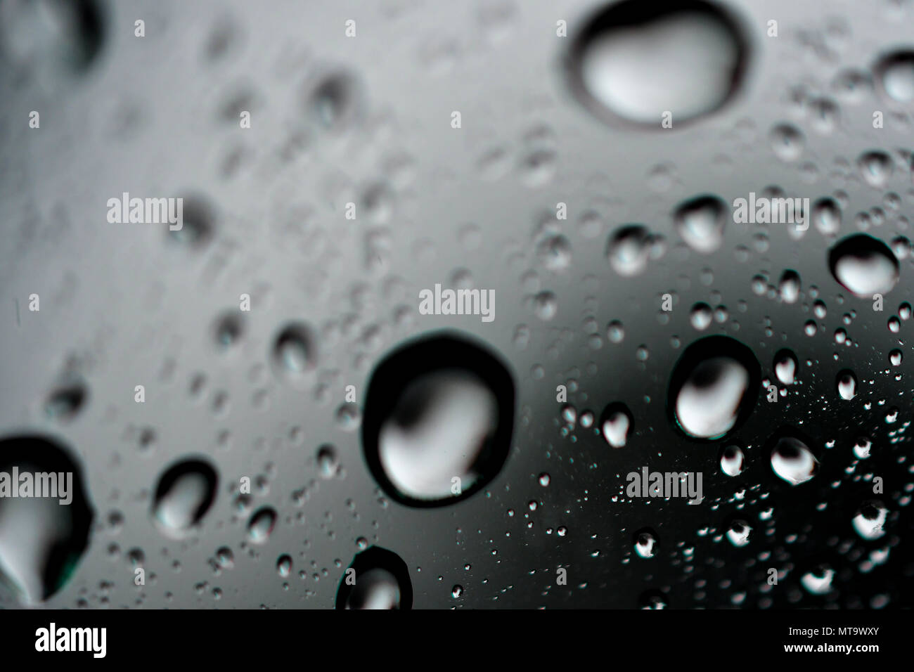 macro droplets bubbles Stock Photo