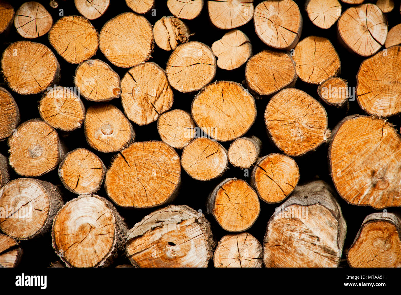 Pile Of Wood Logs Storage For Industry
