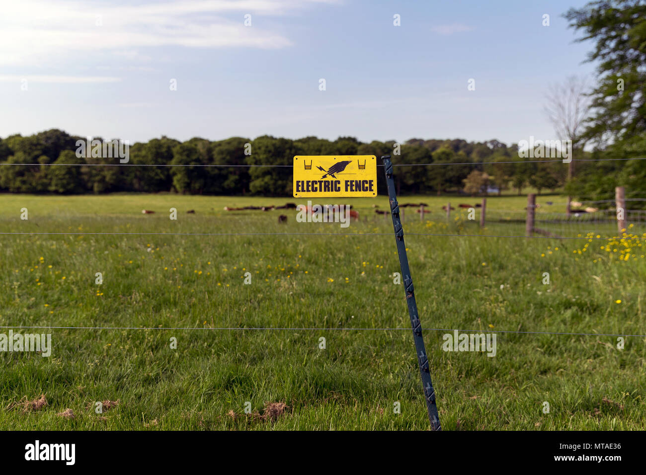 Agricultural Fencing Stock Photos Electric Accessories 7 Strand Fence Wire An In A Field Electrified Barrier