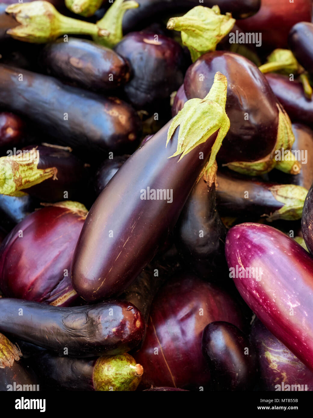 Top down heap of fresh eggplants on a market counter - Stock Image
