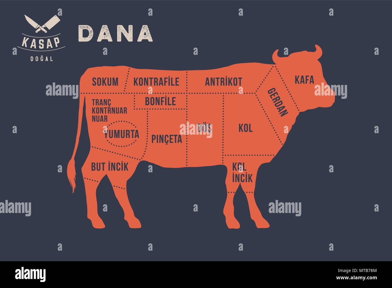 Meat cuts. Poster Butcher diagram - Dana - Stock Image