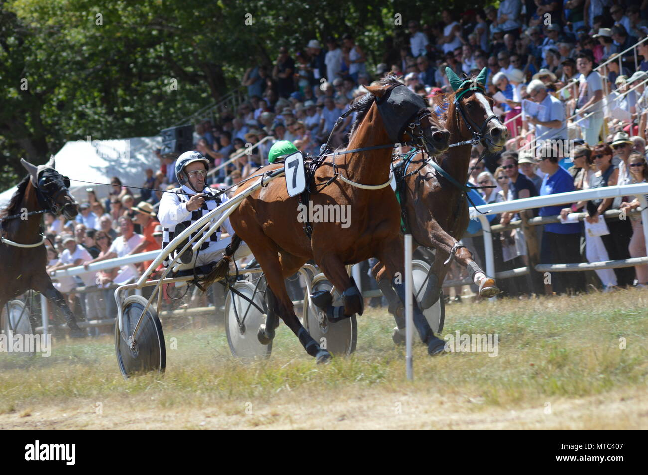 Hippodrome a Sault (South of France, The only horse race in the year, 13 August 2017) Stock Photo