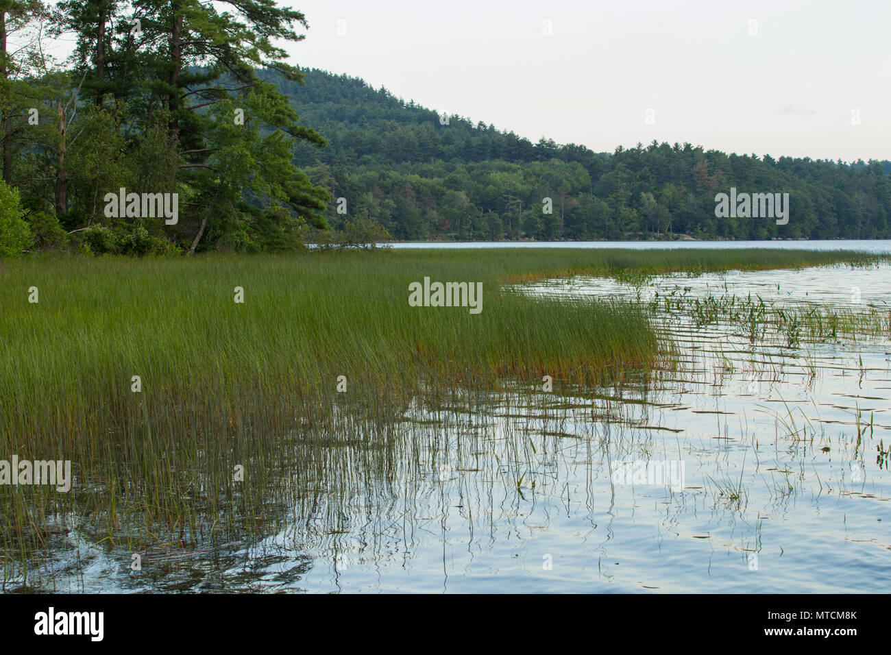 Drinking Water Source for City of Manchester, NH. covers 5.6 miles. Great location for family barbeques and sailing, hiking. Has hiking, biking trails - Stock Image