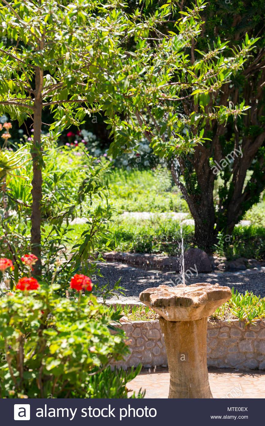 Garden Space At Jardin Bio Aromatique Nectarome Ourika Valley