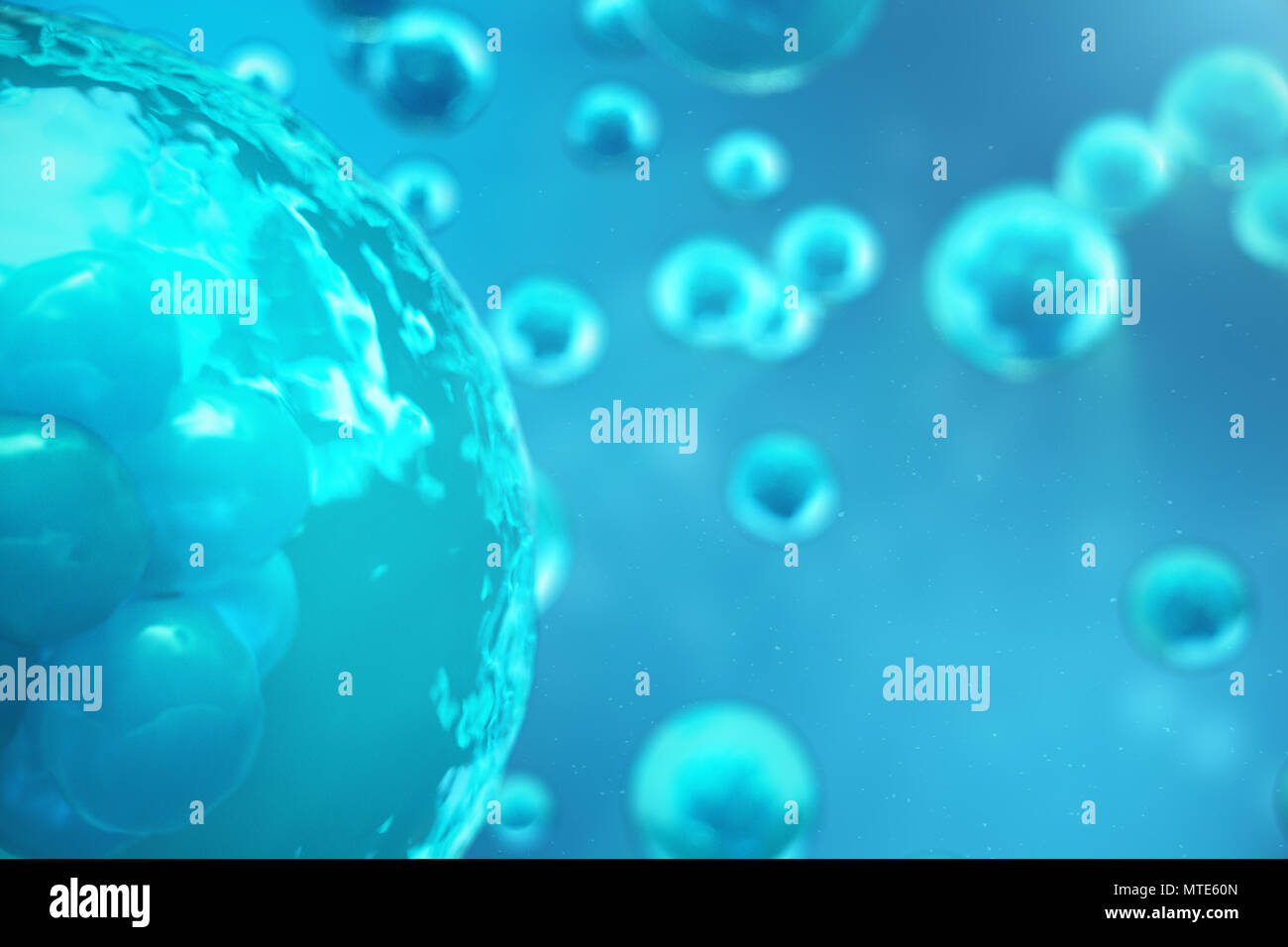 3D Rendering human or animal cells on blue background  Concept Early