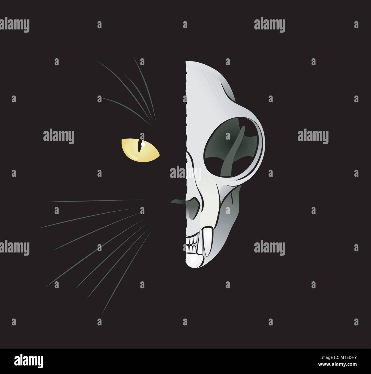 Quantum Cat - Dead-And-Alive - Stock Image
