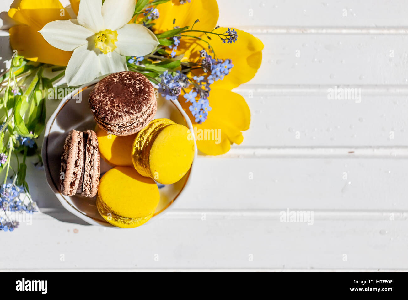 macarons or macaroons dessert sweet beautiful to eat. chocolate and lemon desserts on a white wooden table.Tasty dessert flat lay and daffodils and forget-me-not flowers. - Stock Image