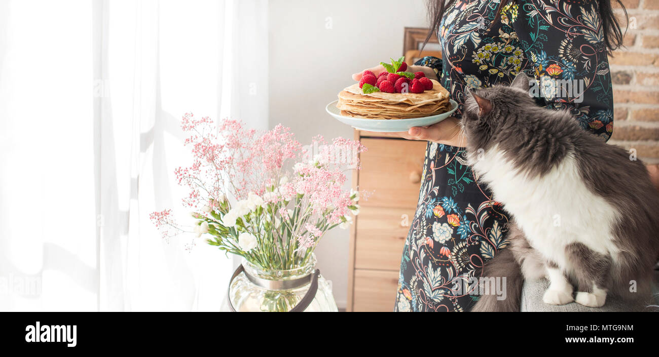 Photo of happy young woman standing at the kitchen near the window in home and cat. Focus on pancakes. Copy space - Stock Image
