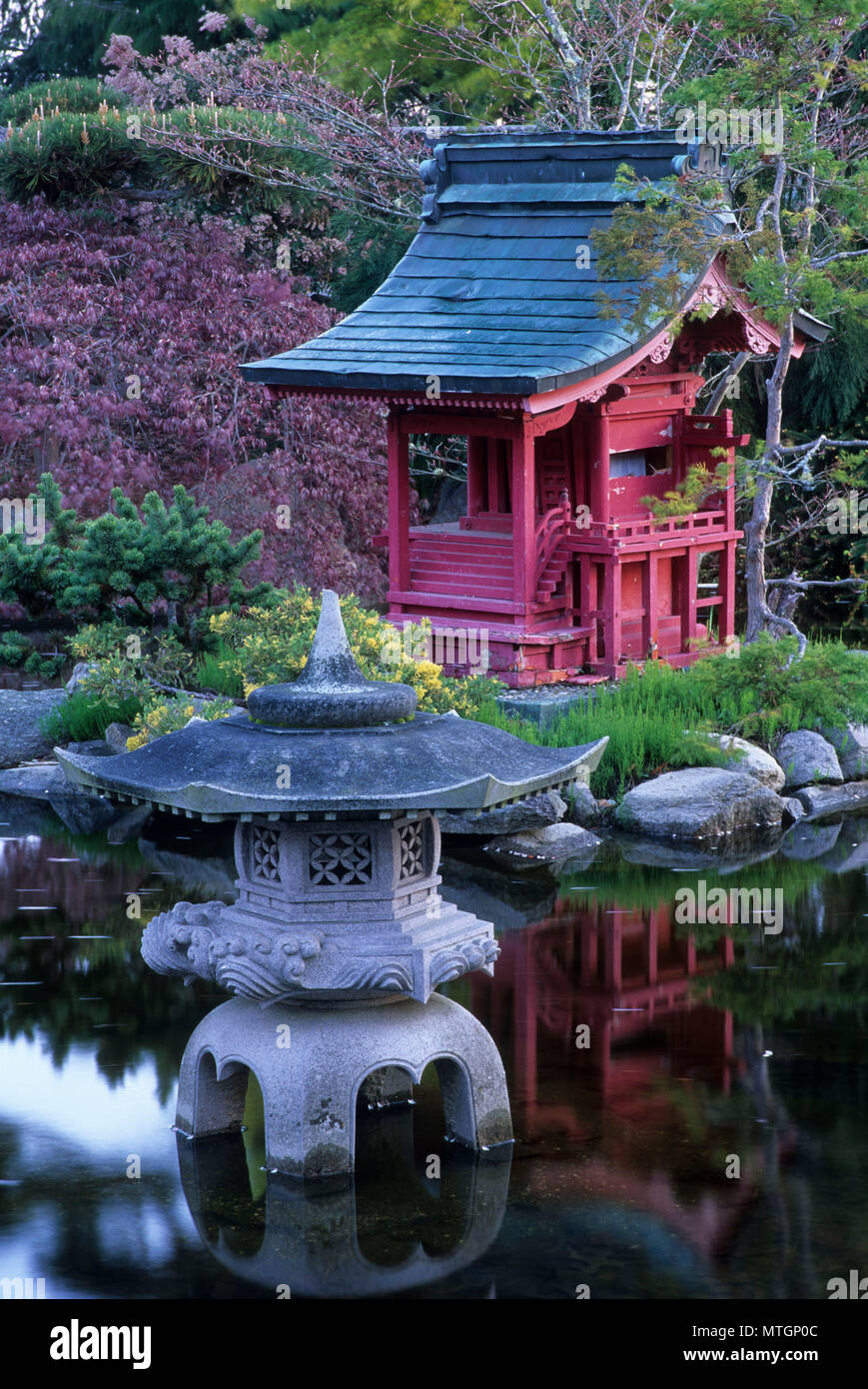Japanese Garden, Point Defiance Park, Tacoma, Washington - Stock Image