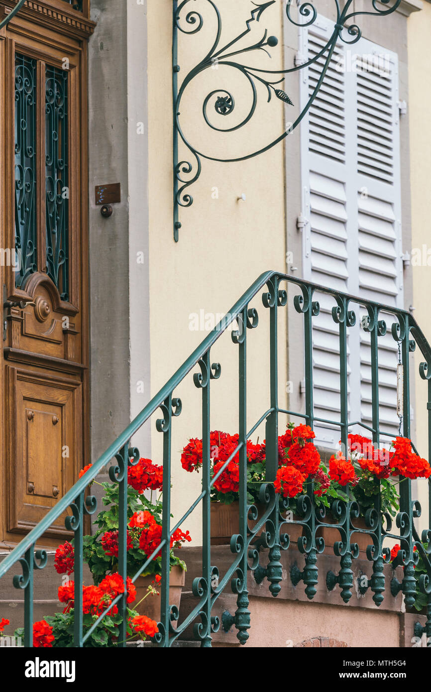 Steps and beautiful doors with flowers front door european house