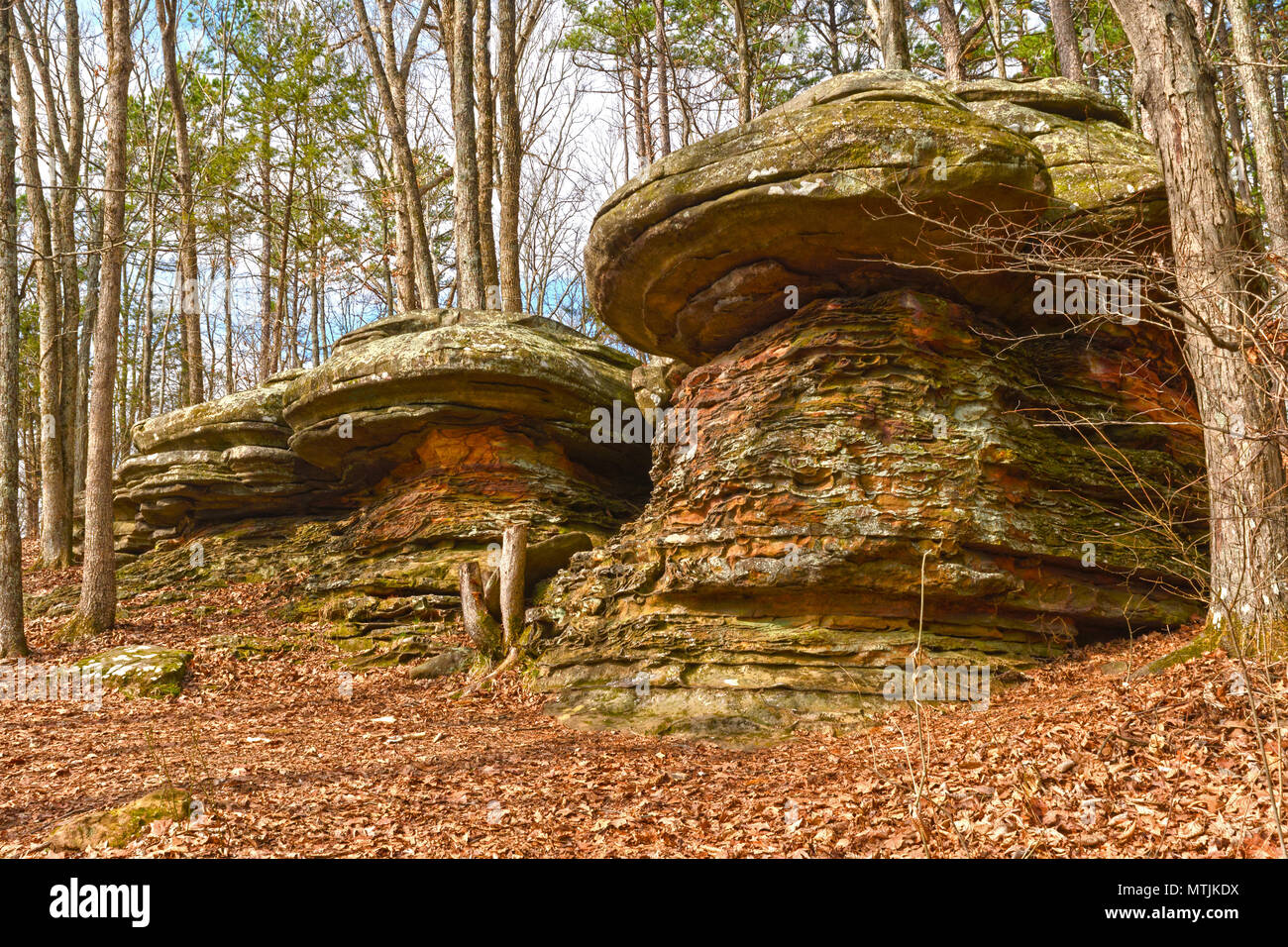 Colorful Rocks in the Forest in the Garden of the Gods in Shawnee National Forest in Illinois - Stock Image