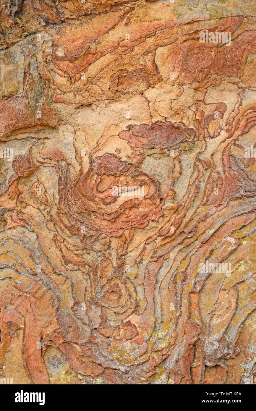 Liesegang Formation Details in Garden of the Gods in Shawnee National Forest in Illinois - Stock Image