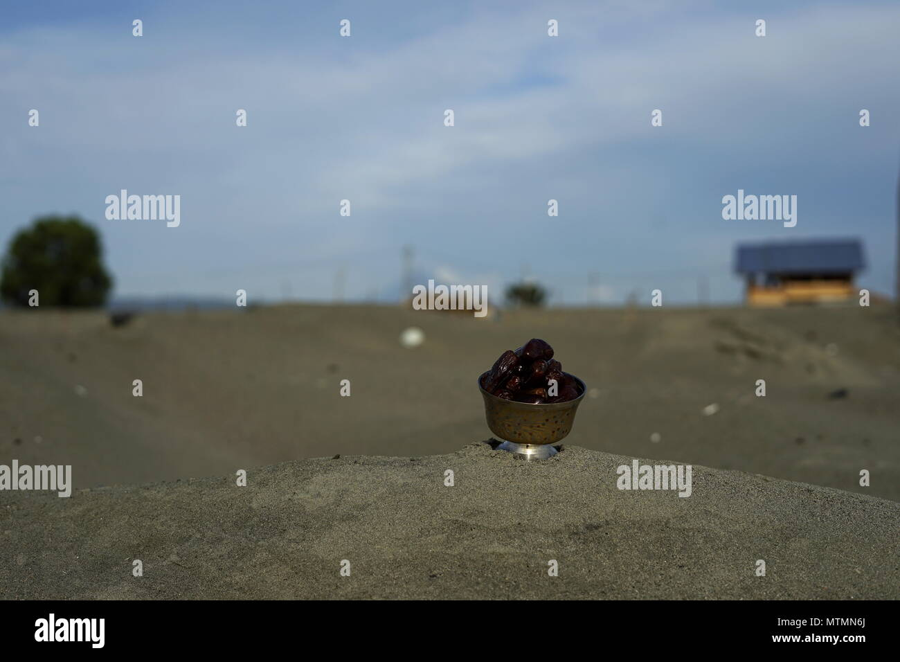 Date Fruit in Vintage Silver Plate - Stock Image