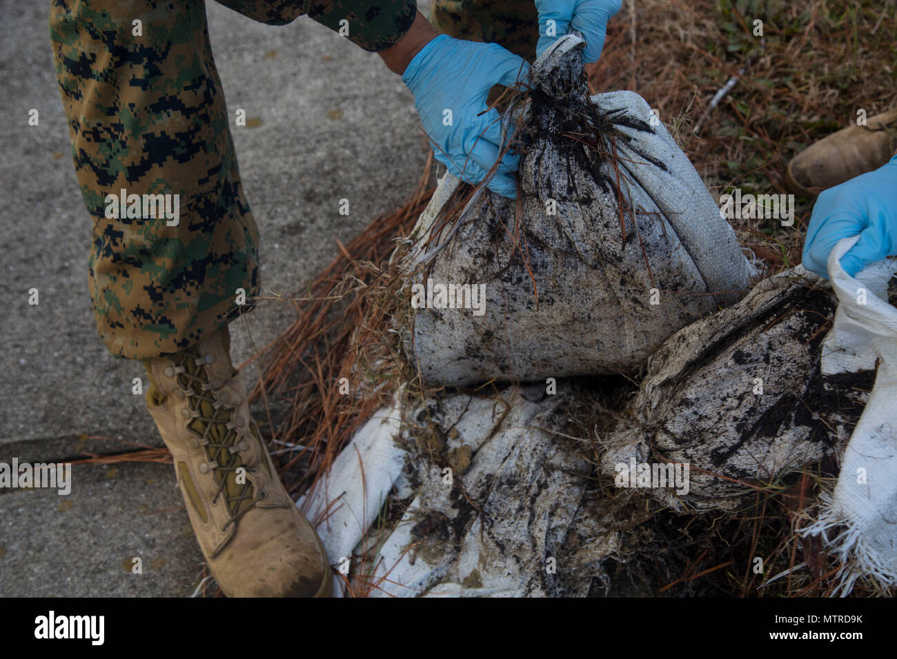 U.S. Marines with Headquarters and Support Battalion, Marine Corps Installation East, remove torn sandbags from the ground, Camp Lejeune, N.C., Jan. 12, 2017. The clean sweep was conducted to ensure a good state of cleanliness is being maintained within the units' respected facilities. (U.S. Marine Corps photo by Lance Cpl. Austin Livingston) - Stock Image