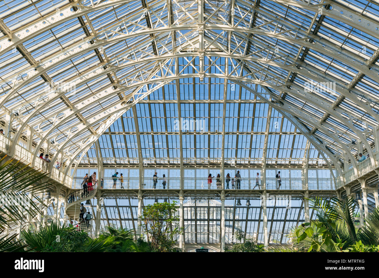 Interior View of the newly renovated Temperate House at the Royal Botanic Gardens Kew, Richmond Upon Thames, London, United Kingdom. Stock Photo