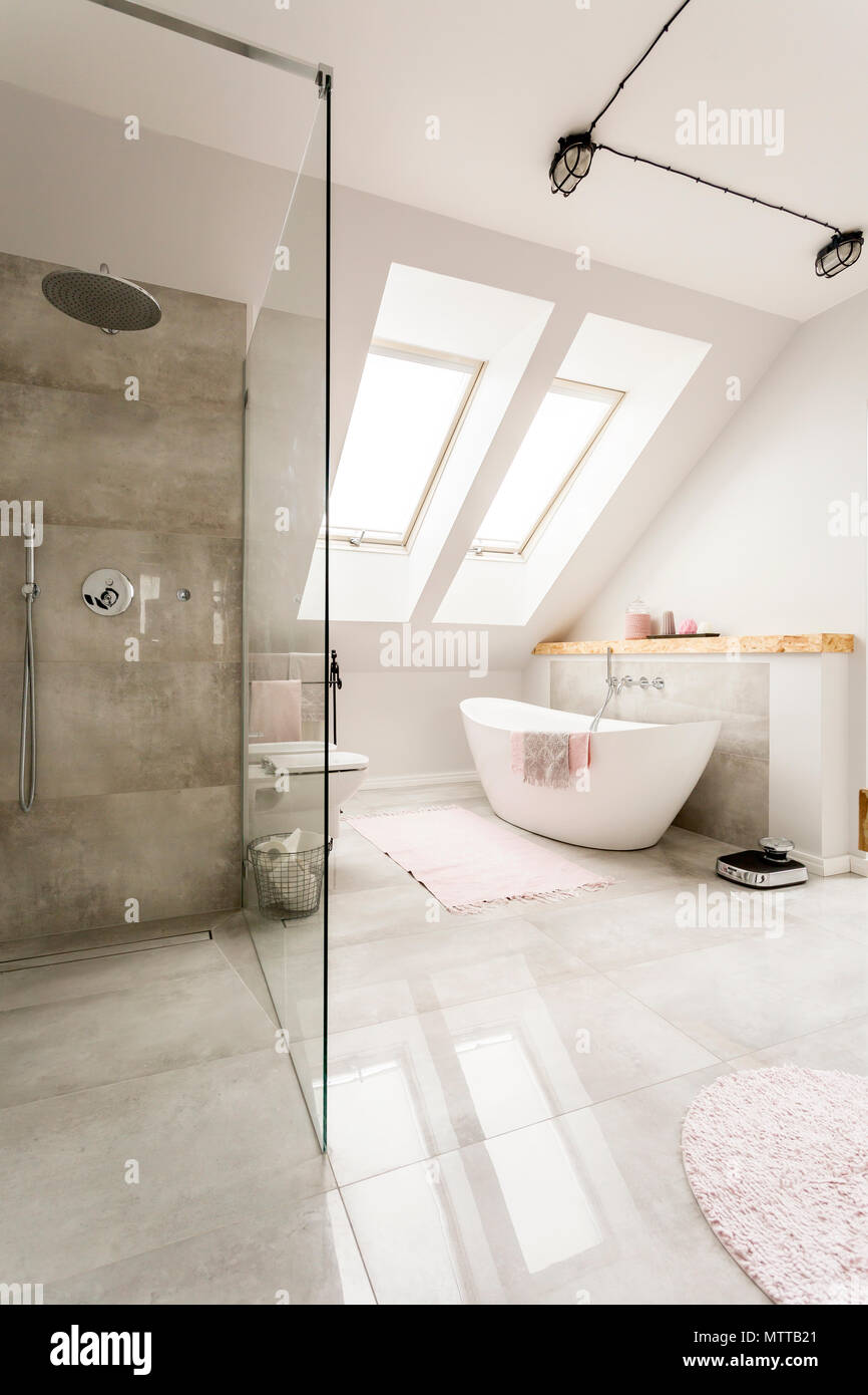 Spacious new design attic bathroom with glass walk in shower ...