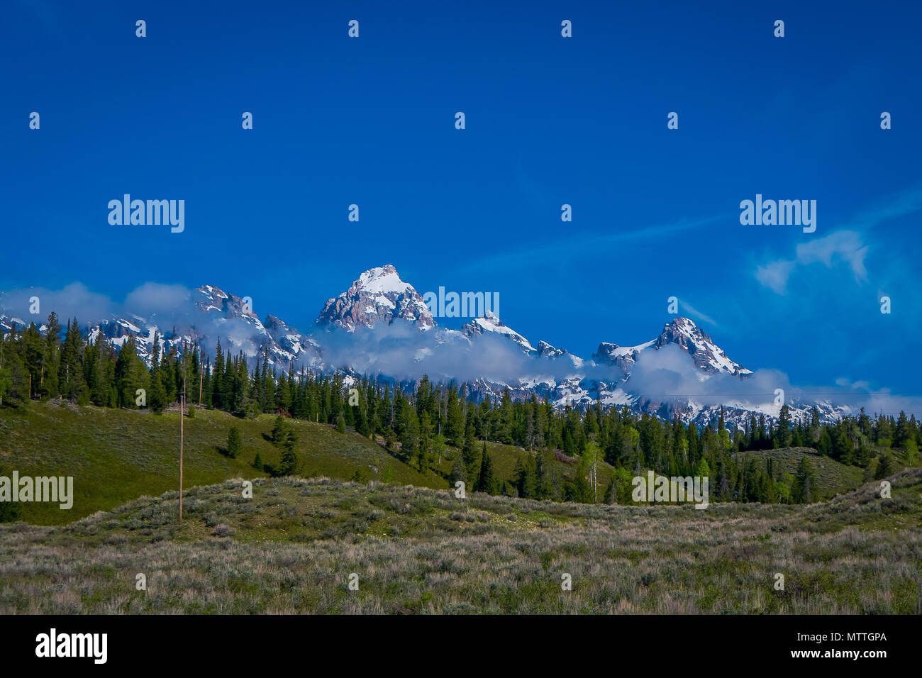 Grand Tetons range in morning light, with a huge mounatins partial covered with snow in the horizont in gorgeous blue sky - Stock Image