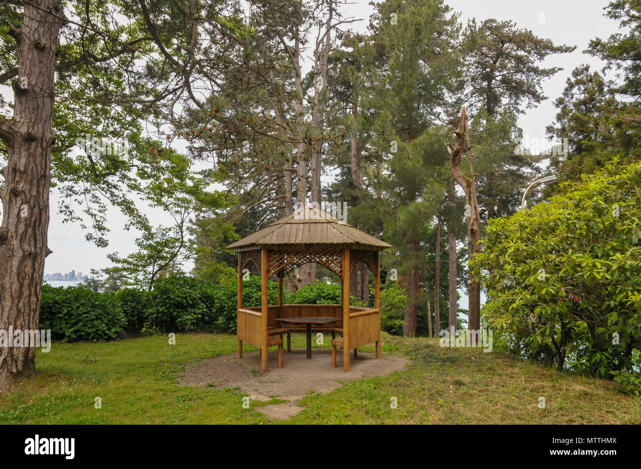 Batumi Botanical Garden is a 108 hectare area of land 9 km north of ...