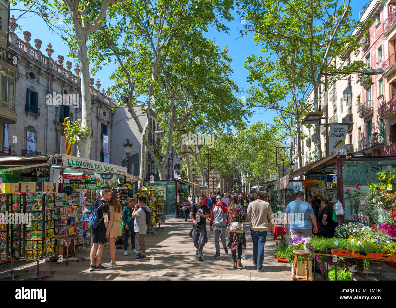 Las Ramblas, Barcelona. Stalls along the busy Rambla Sant Josep, Barcelona, Catalunya, Spain. - Stock Image
